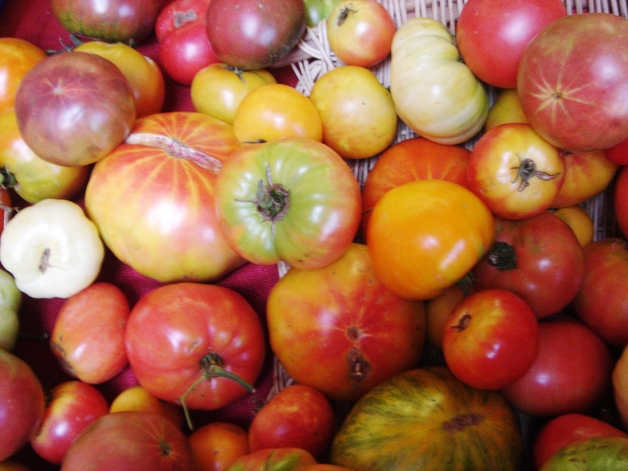 Fresh fruits and vegetables, like these heirloom tomatoes from Butcher Creek Farm, are a staple of gluten-free diets.