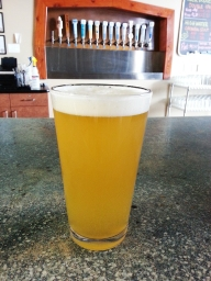 The South Side Citra Blonde is the favored summer ale at Confluence Brewing Company.
